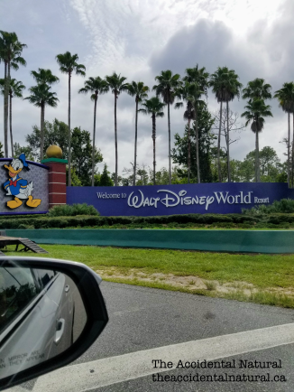 Disney World sign